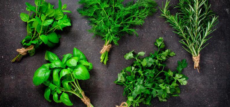 9 herbal soup for detoxification